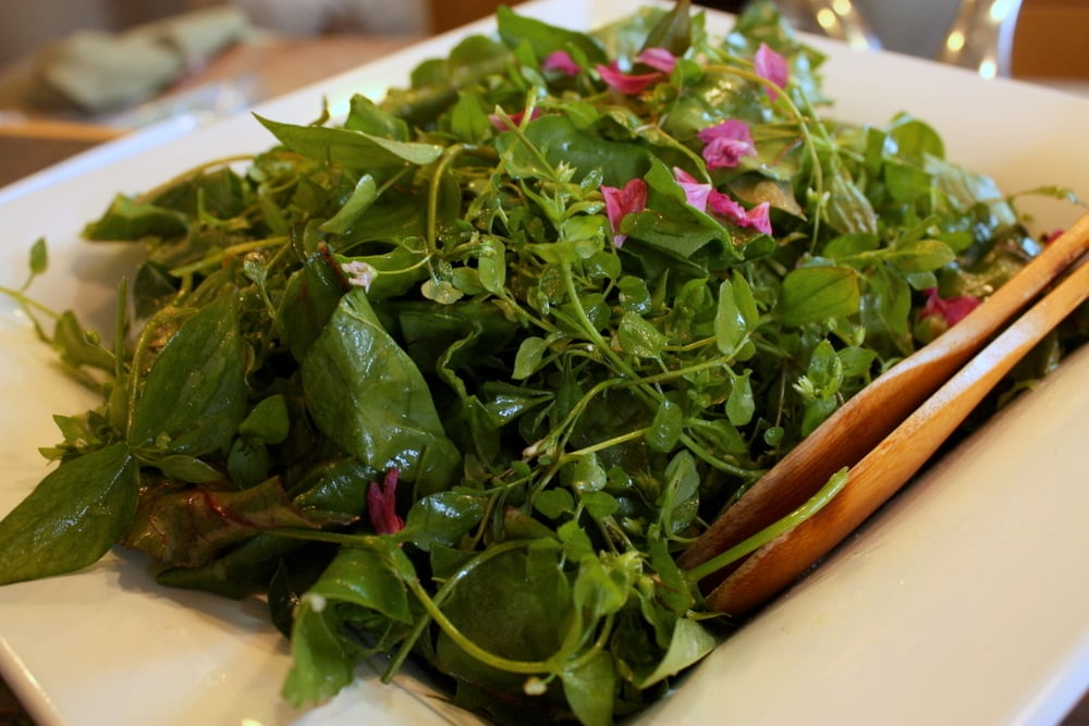 a foraged salad
