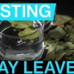 Thumbnail image for bay leaf tasting video embedded from YouTube